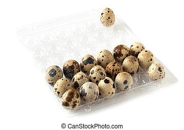 Quail Eggs On Egg Tray