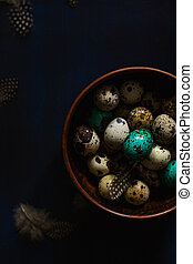 Quail eggs, some colored teal, feathers in bowl on dark blue background. Dark moody Easter card