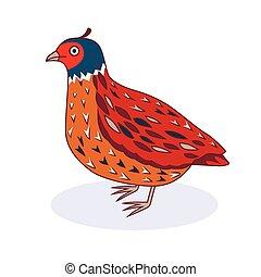 quail., vetorial, -, pássaro, ilustração