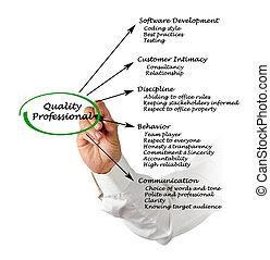 qualità, professionale