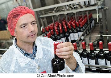 qualité, inspection, portrait, vin, aléatoire