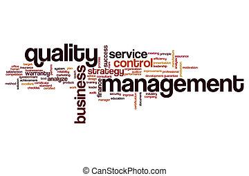 Quality management word cloud concept