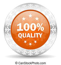 quality orange icon, christmas button