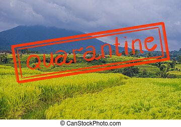 Quarantine due to coronavirus epidemic covid19 Beautiful ...