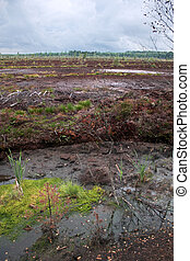 Quarry for extraction of peat