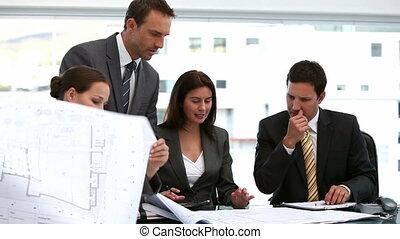 quatre, architectes, regarder, plans
