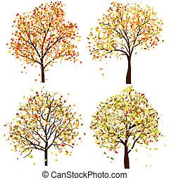quatre, automne, ensemble, arbre