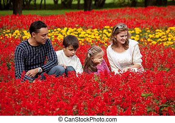 quatre, famille, parc, côté, regarder, fleurir
