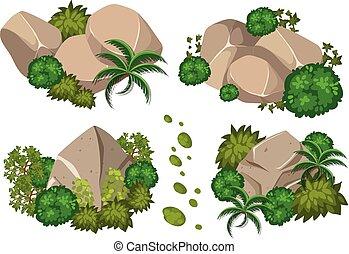 quatre, motifs, arbres, rochers