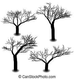 quatre, mourir, silhouette, arbre