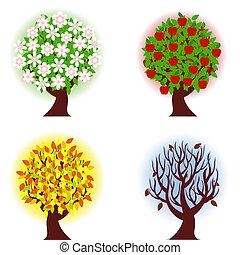 quatre, pomme, saisons, arbre.