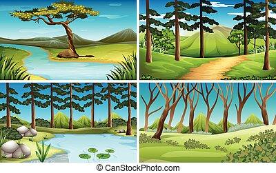 quatre, rivière, scènes, forêt