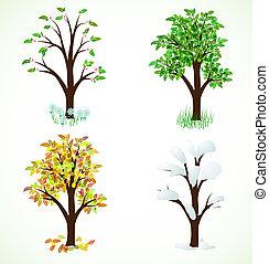 quatre, saison, arbres