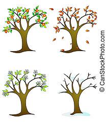 quatres saisons, -, bomen, colorfull