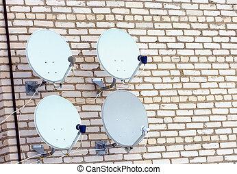 quatro, antenas, satélite, television.