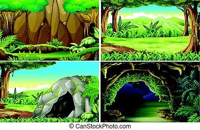 quatro, diferente, cenas, florestas