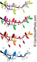 quatro estações, árvore, pássaros