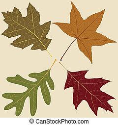 quatro, folhas