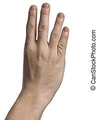 quatro, mostrando, dedos, mão