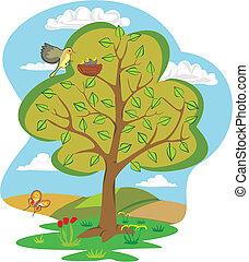 quattro, estate, -, albero, stagioni