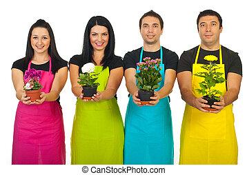 quattro, fioraio, lavorante, piante, esposizione