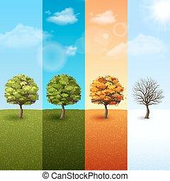 quattro, stagione, set, albero, bandiera