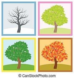 quattro stagioni, albero, cambiamento, anno