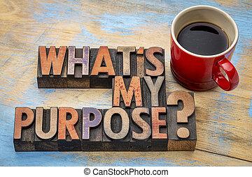 que, é, meu, propósito, pergunta