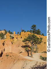 Queens garden trail in Bryce Canyon