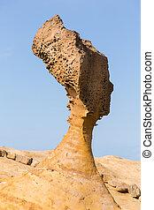 queen's head shape rock in Yehliu geopark, Taiwan