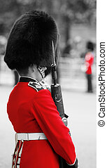 Queen's Soldier at Queen's Birthday Parade.
