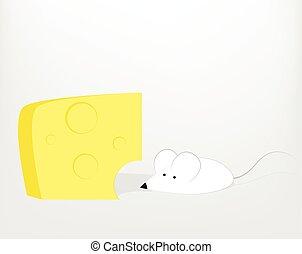 queijo, branca, rato, caricatura