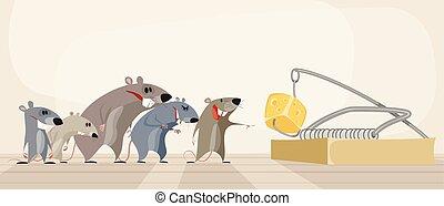 queijo, ratoeira, roedores