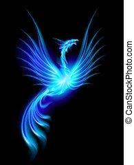 queimadura, phoenix