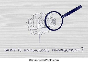 quel, gestion, connaissance