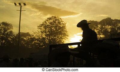 quelqu'un, coucher soleil, assis, regarder
