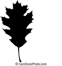 quercia, silhouette, settentrionale, rosso