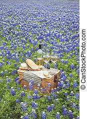 queso, canasta de picnic, colina, vino, countr, tejas, bread