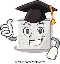 queso, carácter, graduación, feta, pedazos
