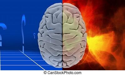 question, cerveau, fond, résumé, orange, blanc, marques