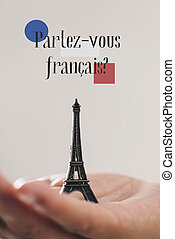 question do you speak French? in French