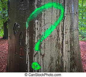 question mark on a tree trunk in the forest close up