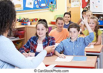 question réponse, pupille, élémentaire, mâle, classe