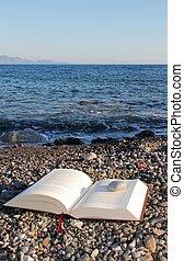 questione, lettura, spiaggia