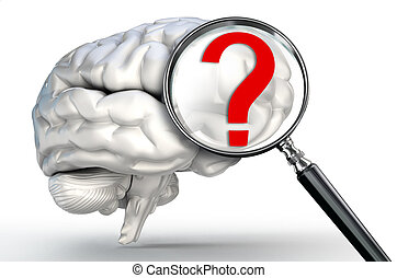 questionmark on magnifying glass and human brain