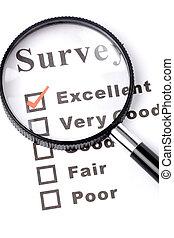 questionnaire and magnifier, business concept