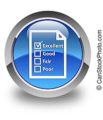 Questionnaire icon glossy blue round button