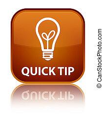 Quick tip (bulb icon) special brown square button