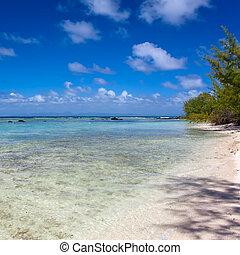 Quiet bay of the island Gabriel. Mauritius.