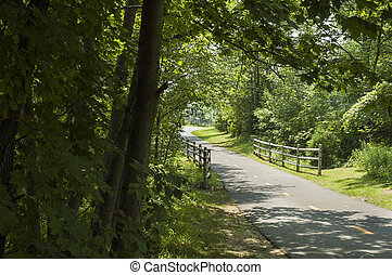 Peaceful bike path curves out of sight